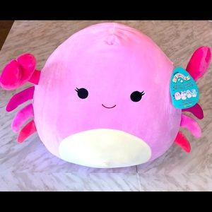 """NWT 16"""" Cailey Crab Squishmallow"""